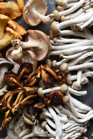 A mushroom medley of chanterelles, shitakes, enkoi, hen of the woods, and chestnut
