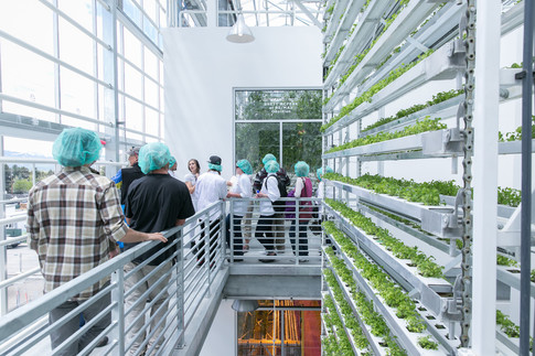 Vertical Harvest's Wyoming facility pictured here will be similar to the one the compnay is building in Westbrook.