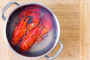 Savory Lobster, Fennel, and Saffron Broth
