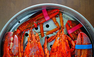 The Last Bite: Maine Lobster Croque Monsieur