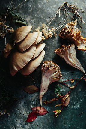 Salt Water Farm Cooks for Fall