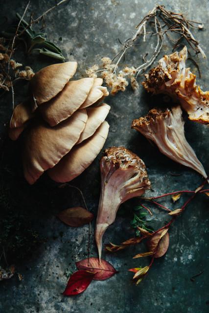 Oysters and Maitake mushrooms foraged near Salt Water Farm