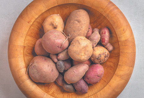 A bowl of Maine-grown russets, fingerlings, red maria, satina, and sweet potatoes