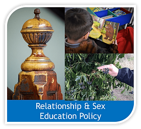 Copy of rse policy image.png