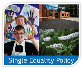 Copy of Single equality policy image.png
