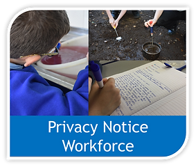 Privacy notice workforce image.png