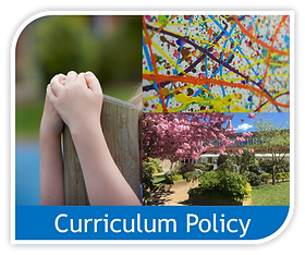 Copy of curriculum policy image.png