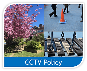 Copy of cctv policy image.png