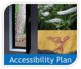 Copy of Access plan image.png