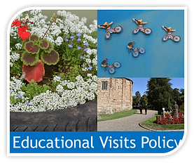Copy of educational visits policy image.