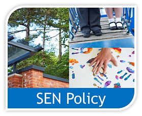 Copy of SEN policy image.png