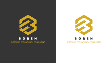 Brand Identity - Boren Systems & Technology Consulting