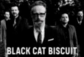 NP037 Black Cat Biscuit - Parrot Woman 1