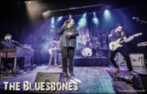 The BluesBones promo Pic small.jpg