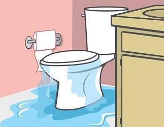 Toilet-water-overflow