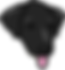 pup cup logo only head.png