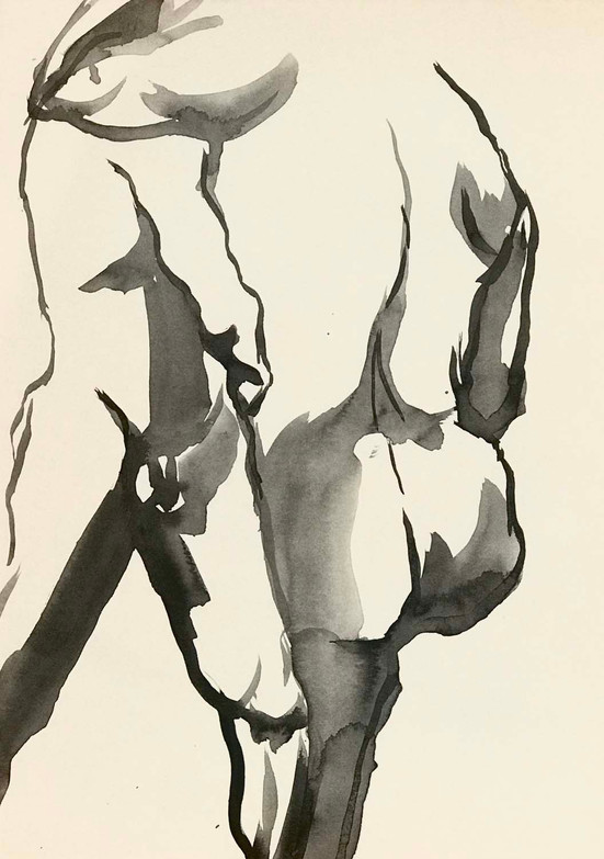 Elnaz-Haghghi_Drawing_Nudes_30x40_Ink on paper_2018-4