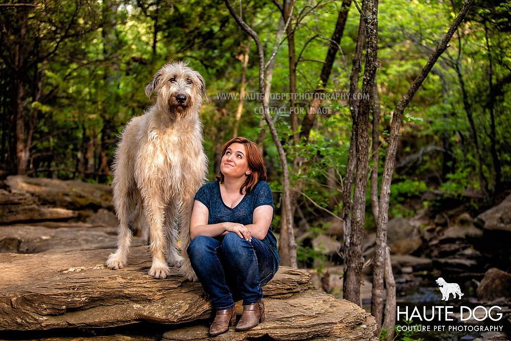 Dallas pet photography Irish Wolfhound in trees with woman