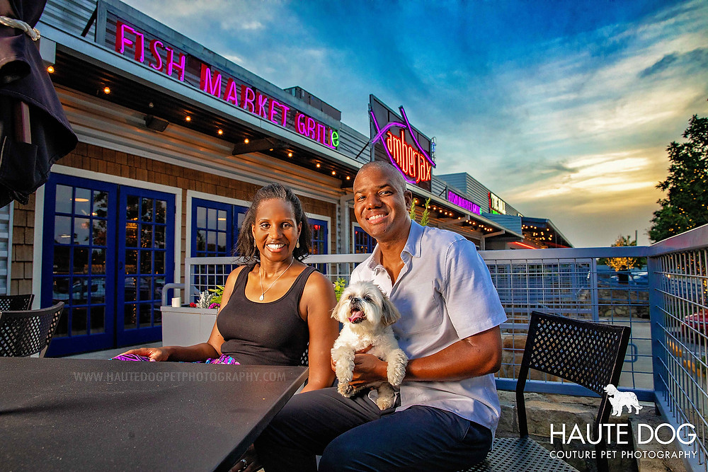Dallas dog photographer Shih Tzu at Amberjax Trinity Groves