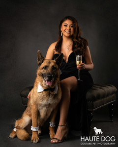 Dallas pet photographer Vanity Fur dog photography session German Shepherd and champagne