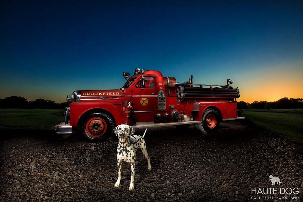 Dallas pet photographer Dalmatian fire truck light painting