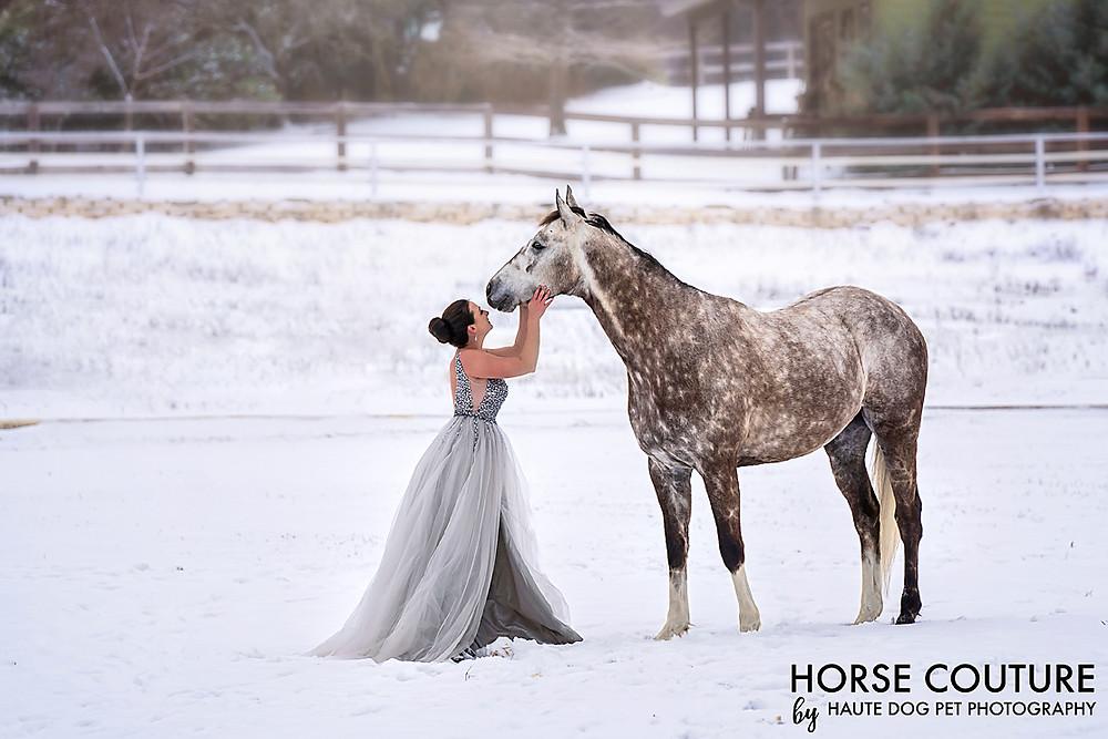 Dallas equestrian photographer in the snow