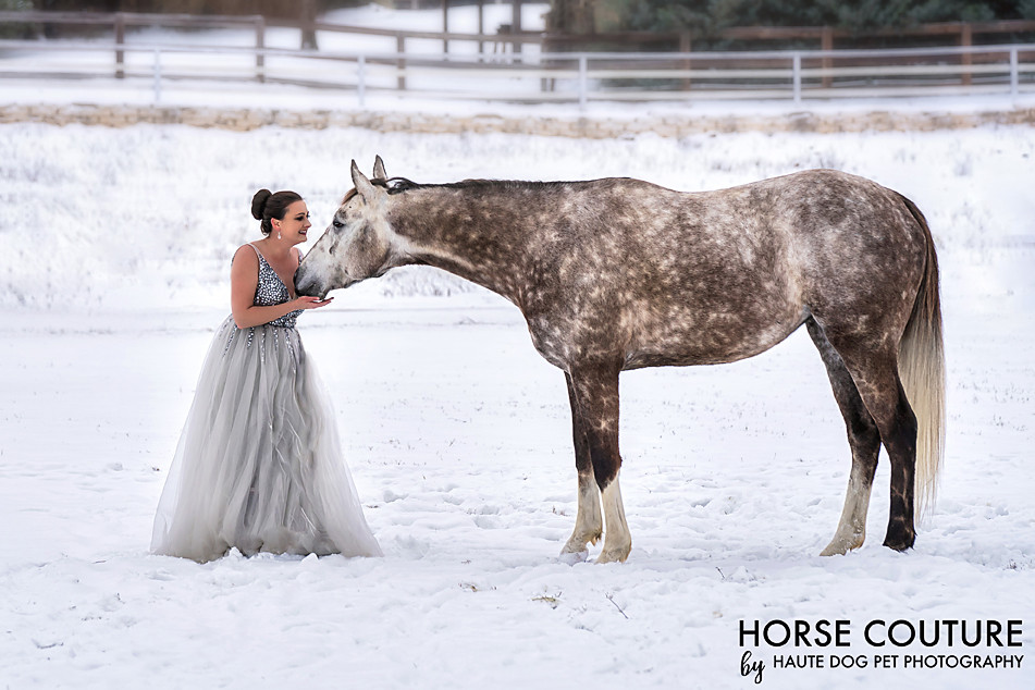 Dallas horse photographer in the snow wearing silver dress