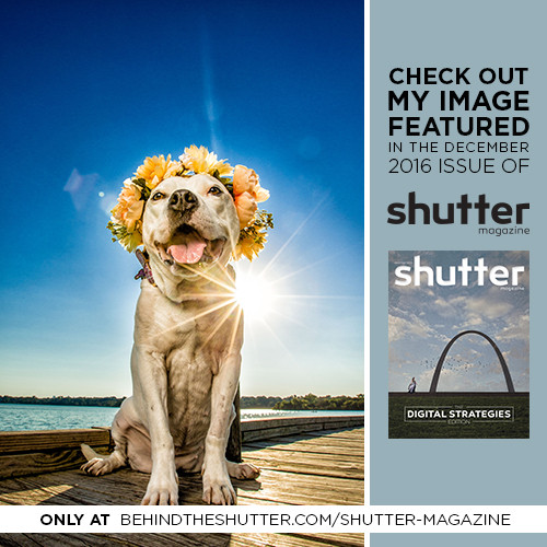 Dallas Pet Photographer Haute Dog Pet Photography featured in Shutter Magazine
