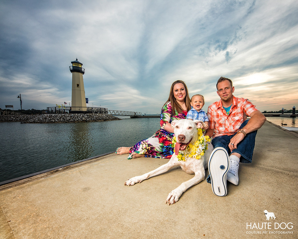pit bull with family at Rockwall Harbor lighthouse near Dallas | © Haute Dog: Couture Pet Photography