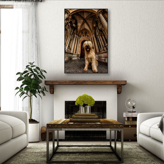 Dallas pet photographer dog wall art