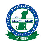 DPOTY_Official_Winner_Logo_The_Kennel_Cl