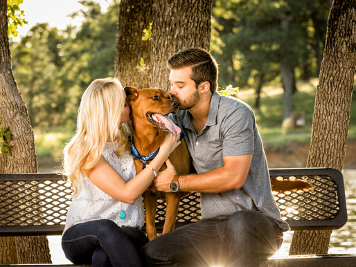 For the Love of Dog | People and Their Pets | Dallas Pet Photography