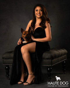 Dallas pet photographer Vanity Fur dog photography session Chihuahua and champagne