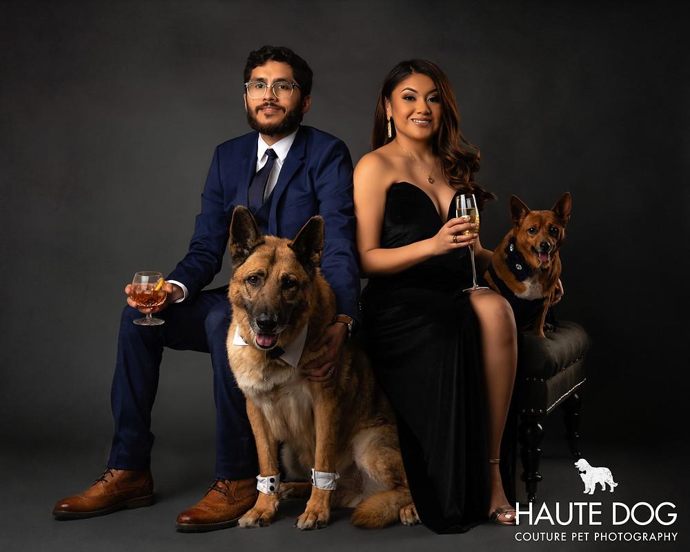 Dallas pet photographer Vanity Fur dog photography session