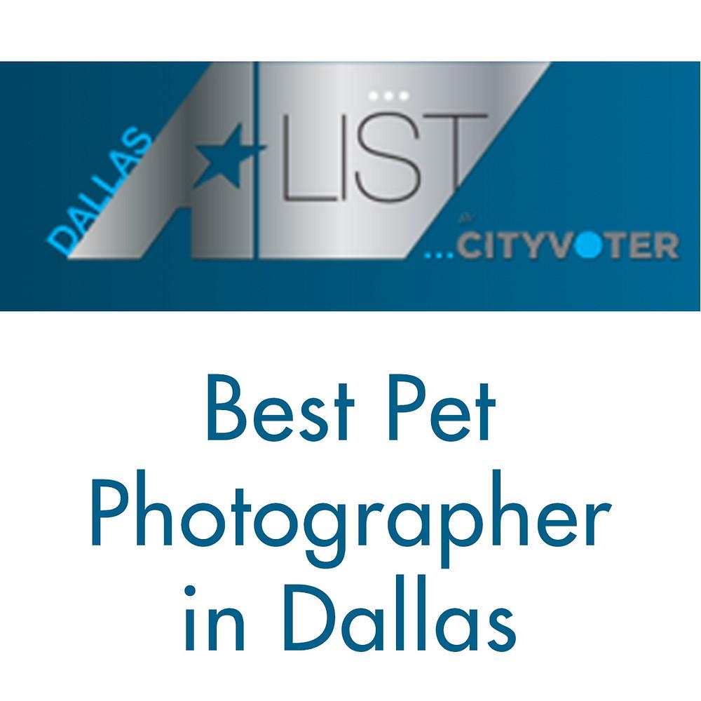 Haute Dog Pet Photography wins Best Pet Photographer in Dallas