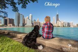 Dallas pet photographer in Chicago