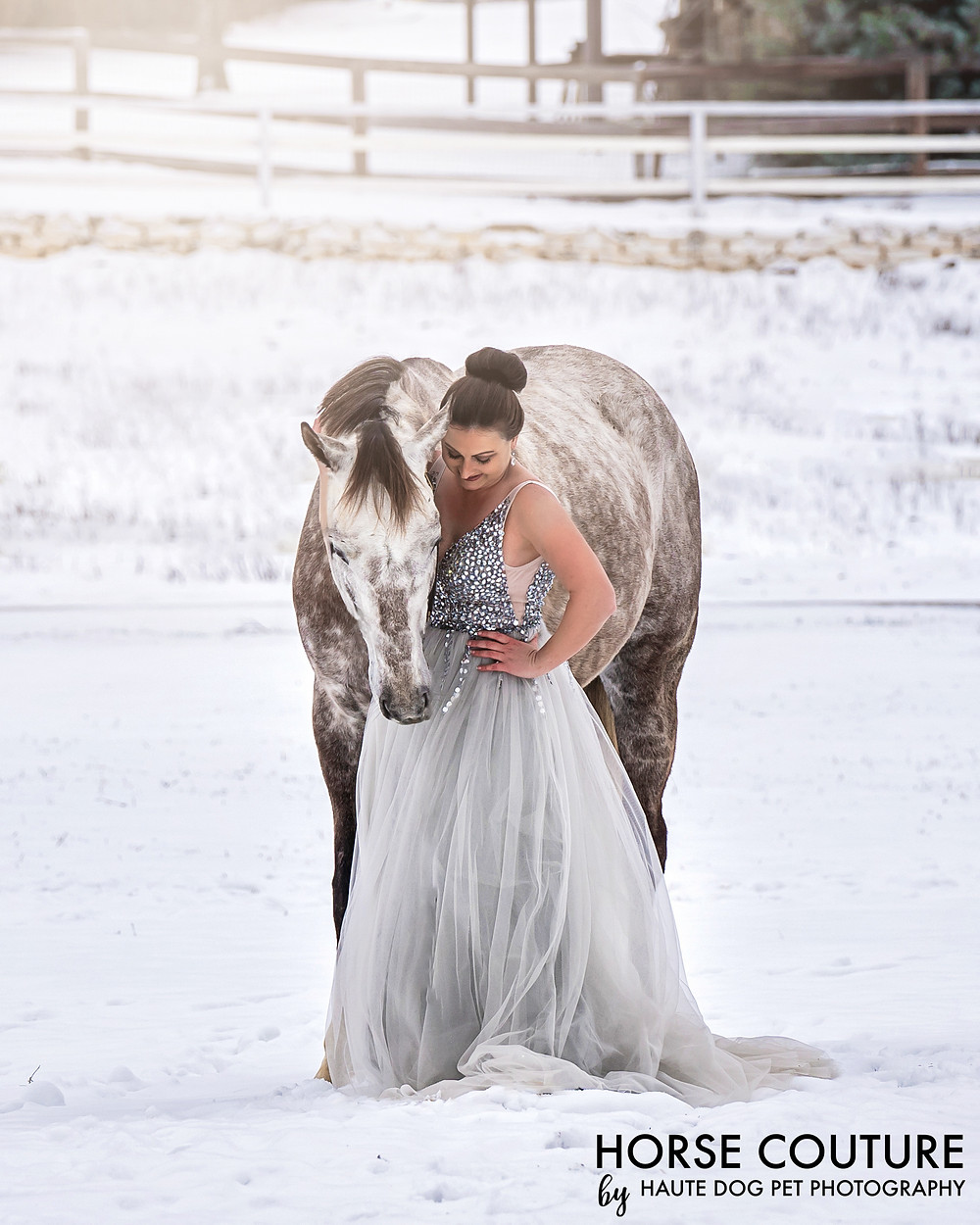 Dallas horse photographer in the snow wearing princess dress