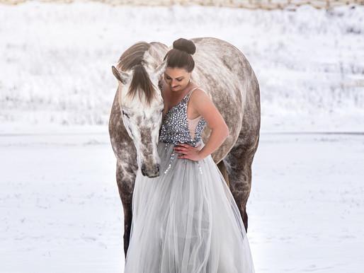Carpe Freeze'm - Seize the Photo Opp! Snowy Dallas Equestrian Photos