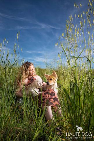 chow pet photography Dallas.jpg