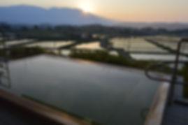 朝日の水面.JPG