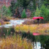 I'll miss my red fibreglass canoe but I