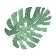 Tropische Blätter 5