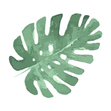 Tropical Leaves 5