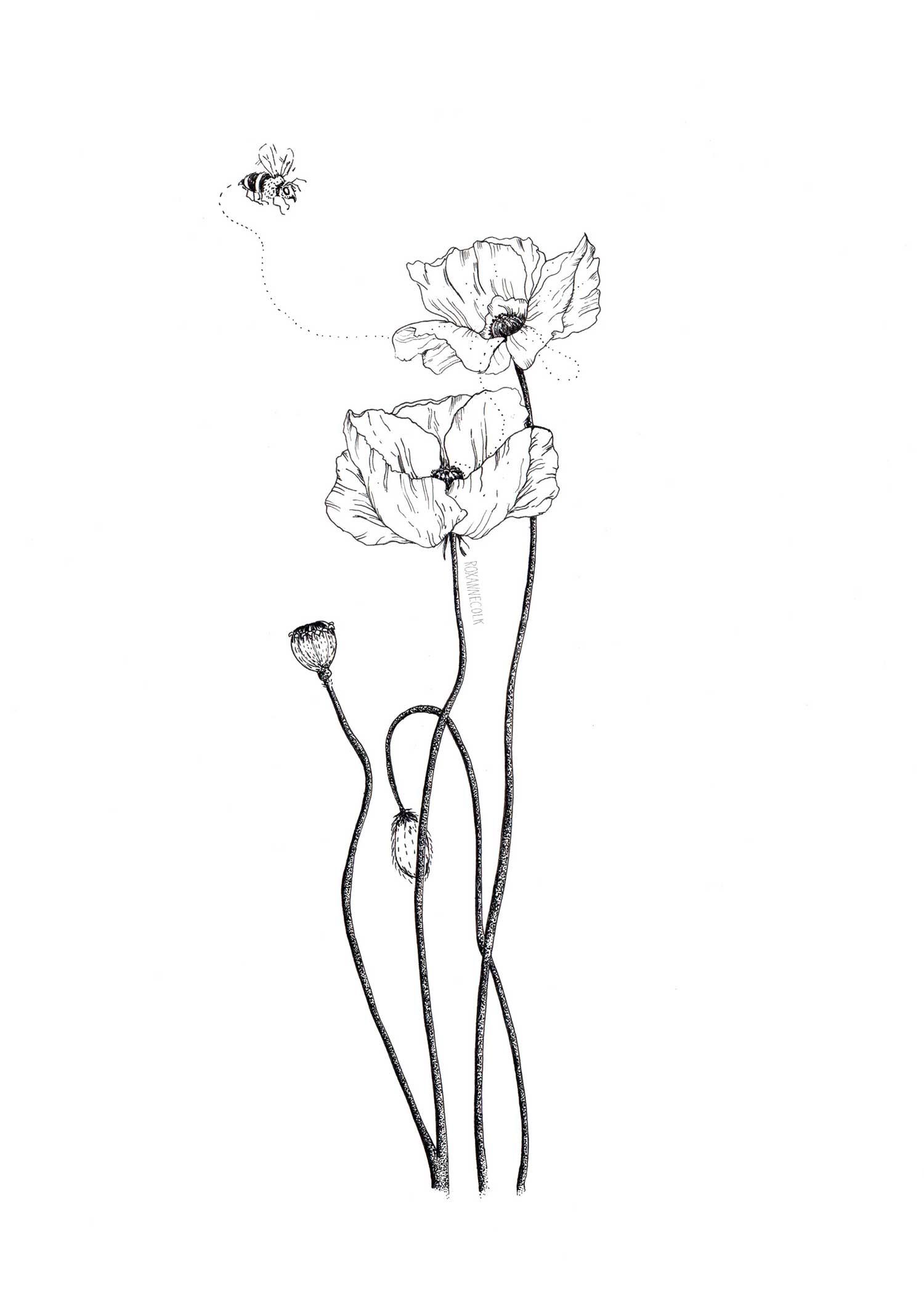 Polli-Poppies