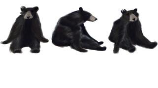 BearCharacterFinal.jpg
