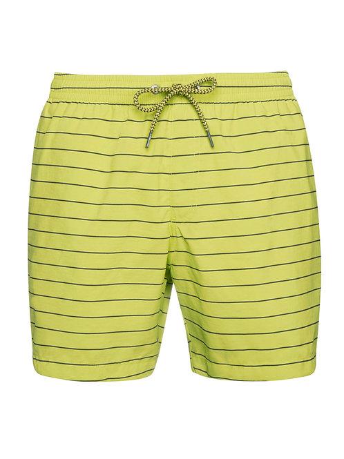 Sharif Beachshort Lime Up