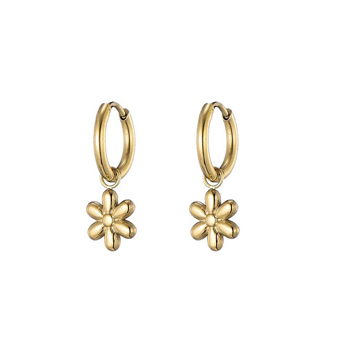 Hoops Daisies Gold