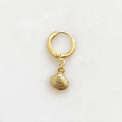 Earring Shell By☆Nouck