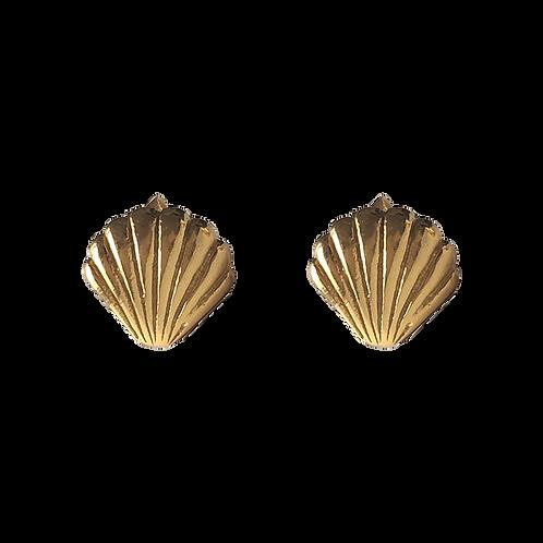 Shell Pin Earrings