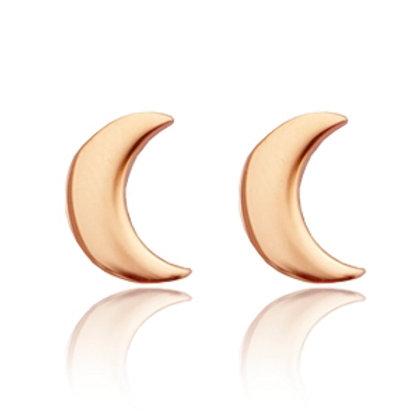 Moon stainless steel earrings